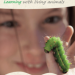 Learning with living animals - ELENA project