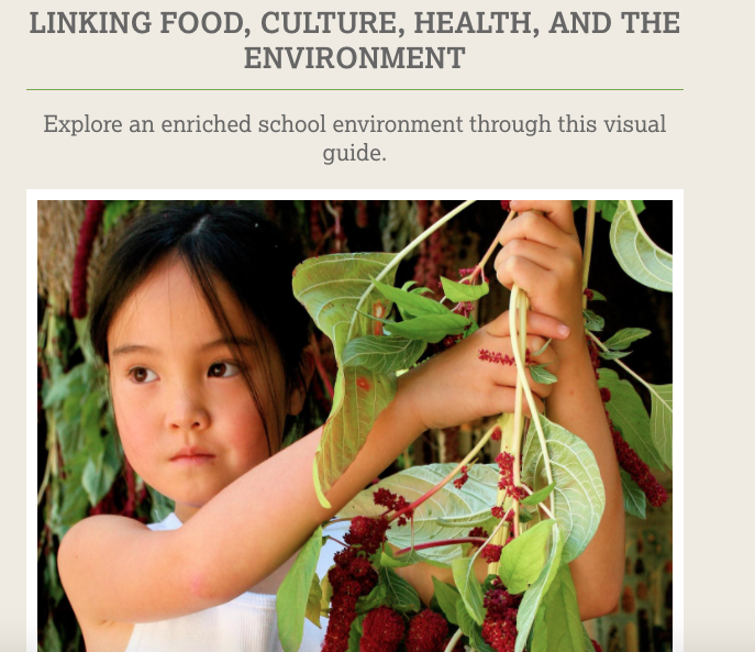 Linking Food, Culture, Health, and the Environment