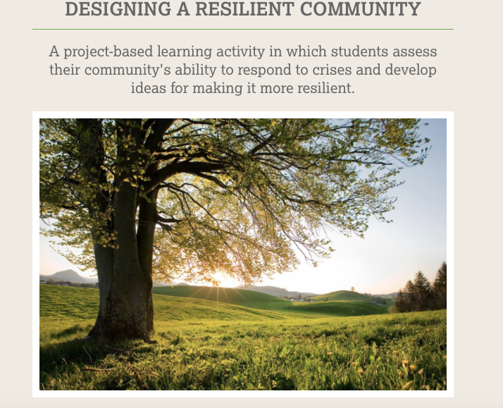 Read more about the article Designing a Resilient Community