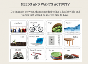 Needs and Wants Activity